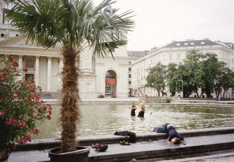 Vienna Crashes